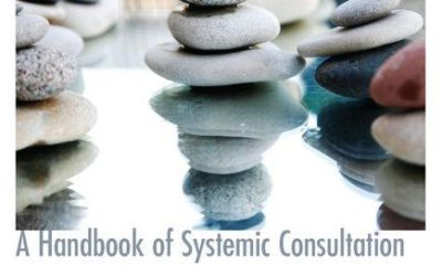 Organizations Connected. A Handbook of Systemic Consultation.
